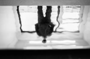 feetfulness_iulian_bulai-10
